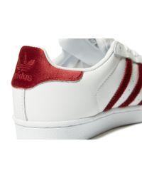 Adidas Originals White Superstar Velvet for men