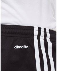 Adidas Squadra 17 Shorts (black/white) Shorts for men