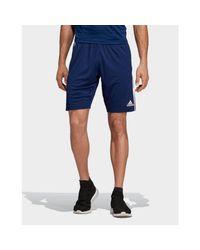 Adidas Blue Tiro 19 Training Shorts for men