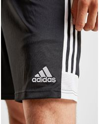 Short Domicile Fulham FC 2019/20 Homme Adidas pour homme en coloris Black