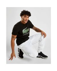Lacoste White Guppy Track Pants for men