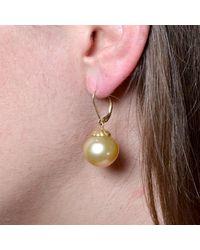 Donna Pizarro Designs - Multicolor 14kt Golden South Sea Pearl Earrings - Lyst