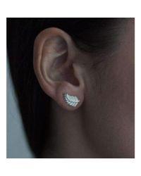 Patience Jewellery - Multicolor Fern Stud Earrings - Lyst