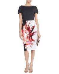 Coast Multicolor Clermont Print Rosie Dress