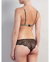 Somerset by Alice Temperley Black Mia Triangle Soft Cup Lace Bra And Brief Set