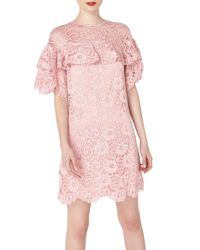 Miss Selfridge   Purple Premium Lilac Lace Dress   Lyst