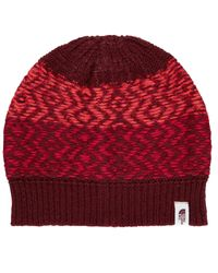 The North Face   Red Tribe N True Beanie   Lyst