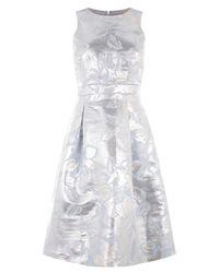 Warehouse Metallic Jacquard Dress