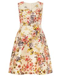 Studio 8 Pink Jennifer Floral Print Dress