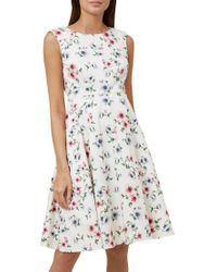 Hobbs Multicolor Nova Dress