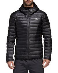Adidas Black Varilite Down Long Sleeve Hooded Men