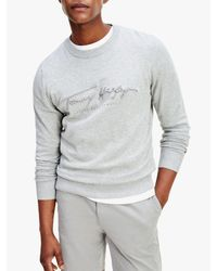Tommy Hilfiger Gray Tonal Autograph Organic Cotton Sweat Top for men