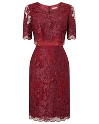 Jacques Vert Purple Petite Lace Layer Dress
