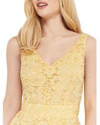 Oasis Yellow Lace V-neck Skater Dress