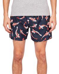 Ted Baker Blue Charter Koi Fish Swim Shorts for men