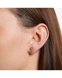 Kate Spade Pink Sailors Knot Studs Earrings