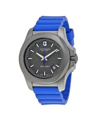 Victorinox Gray Swiss Army I.n.o.x. Grey Dial Blue Rubber Mens Watch for men