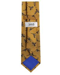 Ascot Accessories Natural Pheasant Wool Tie for men