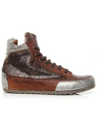 Candice Cooper | Brown Lion Leather High Top Trainers | Lyst