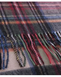 Jules B Purple Wool Tartan Scarf for men