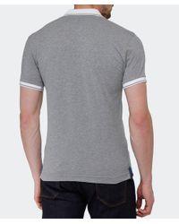 La Martina Gray Contrast Collar Logo Polo Shirt for men