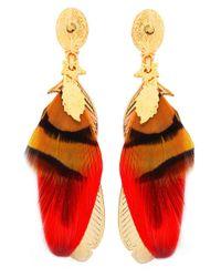 Gas Bijoux - Red Sao Feather Drop Earrings - Lyst
