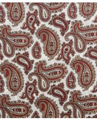 Tootal Brown Double Paisley Silk Scarf