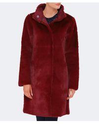 Velvet By Graham & Spencer Red Reversible Faux Fur Mina Coat