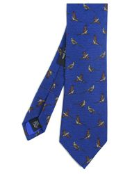 Ascot Accessories Blue Pheasant Wool Tie for men