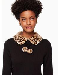 Kate Spade - Black Leopard-print Collar Sweater - Lyst
