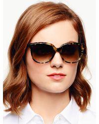 kate spade new york - Brown Bayleigh Sunglasses - Lyst