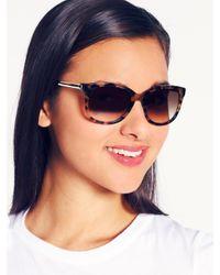 kate spade new york Brown Gayla Sunglasses