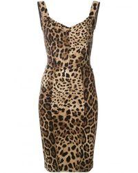 Dolce & Gabbana Multicolor Leopard Bodycon Dress