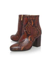 Carvela Kurt Geiger Black Sherbert Snake-embossed Ankle Boots