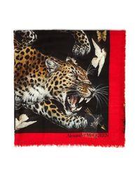 Alexander McQueen Multicolor 'regal Leopard' Shawl Scarf