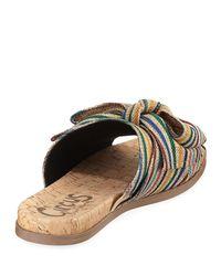 Circus by Sam Edelman Multicolor Ninette Bow Slide Sandal