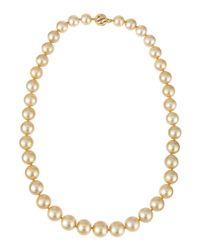 Belpearl | Metallic 14k Golden South Sea Pearl Necklace | Lyst