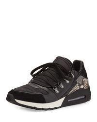 Ash - Black Malcom Snake-print Sneaker for Men - Lyst