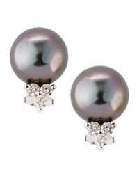 Belpearl - Multicolor Diamond Cluster Tahitian Pearl Earrings - Lyst