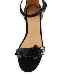 Bill Blass Black Cameron Embellished Flat Suede Sandals
