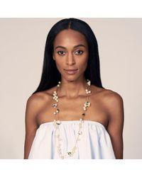 Lele Sadoughi - Multicolor Striped Shell Necklace - Lyst