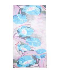 Tilo Blue Flower Graphic Scarf