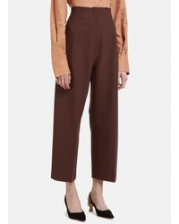 Jacquemus Cropped Droit Pants In Brown