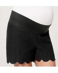 "LOFT - Black Petite Maternity Scallop Jacquard Riviera Shorts With 3 1/2"" Inseam - Lyst"