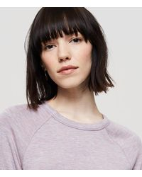 LOFT Multicolor Lou & Grey Signaturesoft Sweatshirt Dress