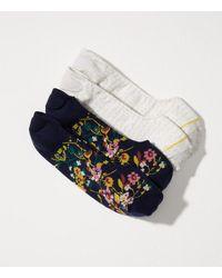 LOFT - Multicolor Floral & Chevron No Show Sock Set - Lyst
