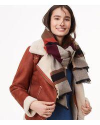 LOFT Multicolor Striped Blanket Scarf