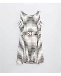 LOFT White Plus Striped Tortoiseshell Print Belted Wrap Dress