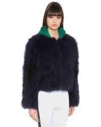 Msgm Satin Cropped Ostrich Feather Jacket In Navy Blue
