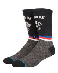 Stance Multicolor Tiger Eye Cotton Blend Socks for men
